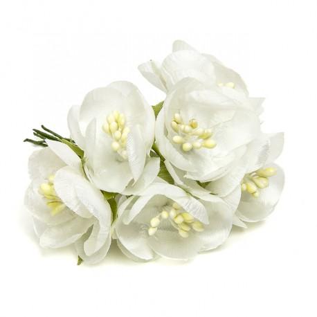 Regalos Originales Para Mujeres Flores Blancas